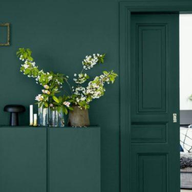 The elegance of dark green