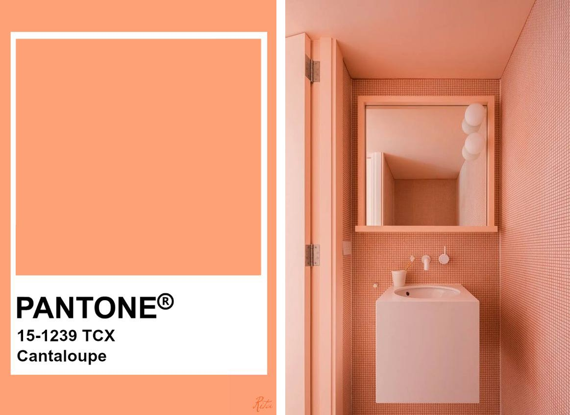 Cantaloupe The New Trendy Color For 2020 Interior Notes Uploaded at august 26, 2016. interior notes