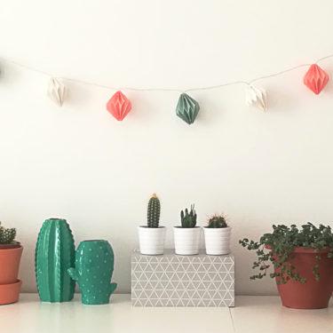 The trendy indoor plants in 2017